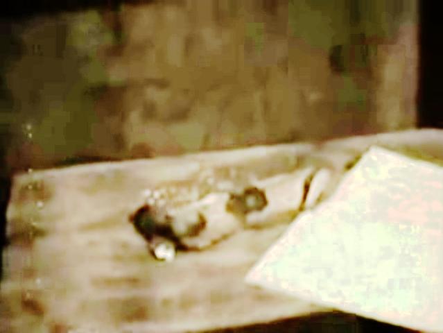 Masturbate with sander